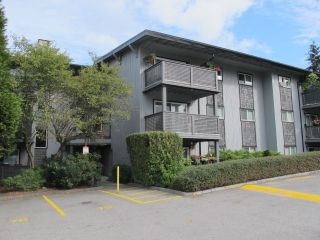 """Photo 1: 164 200 WESTHILL Place in Port Moody: College Park PM Condo for sale in """"WESTHILL"""" : MLS®# R2205815"""