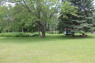 Photo 38: 20 Pine Court in Northumberland/ Trent Hills/Warkworth: House for sale : MLS®# 140196