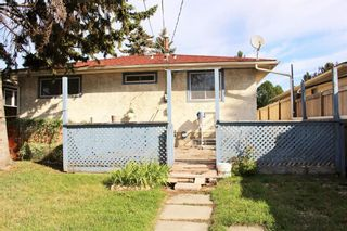 Photo 20: 254 Dovercliffe Way SE in Calgary: Dover Detached for sale : MLS®# A1146227