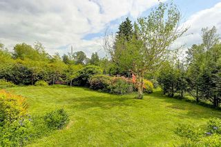 """Photo 18: 26518 100 Avenue in Maple Ridge: Thornhill House for sale in """"THORNHILL URBAN RESERVE"""" : MLS®# R2063894"""