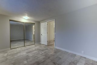 Photo 18: 563 Aboyne Crescent NE in Calgary: Abbeydale Semi Detached for sale : MLS®# A1071517