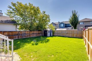 Photo 42: 359 New Brighton Place SE in Calgary: New Brighton Detached for sale : MLS®# A1131115