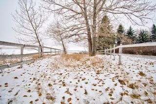 Photo 17: 29342 Range Road 275: Rural Mountain View County Detached for sale : MLS®# A1043659