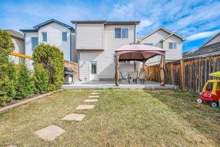 Photo 28: 484 Prestwick Circle SE in Calgary: McKenzie Towne Detached for sale : MLS®# A1101425
