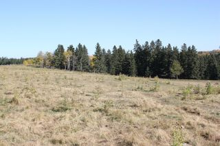 Photo 14: ON Township Road 355A: Rural Red Deer County Land for sale : MLS®# A1039276
