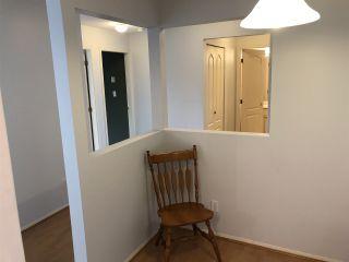 Photo 10: 205 9942 151 STREET in Surrey: Guildford Condo for sale (North Surrey)  : MLS®# R2337611