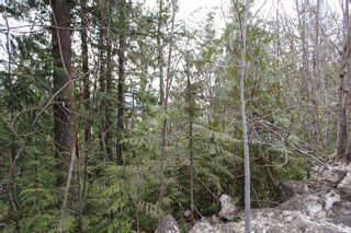 Photo 1: Lot 28 Vickers Trail in Anglemont: North Shuswap Land Only for sale (Shuswap)  : MLS®# 10093853