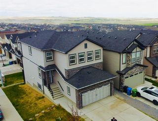 Photo 46: 143 Nolanhurst Rise NW in Calgary: Nolan Hill Detached for sale : MLS®# A1110473