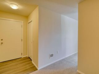 Photo 3: 4415 4641 128 Avenue NE in Calgary: Skyview Ranch Apartment for sale : MLS®# A1147508