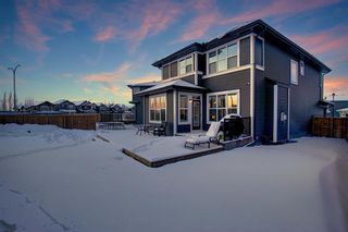 Photo 40: 278 Kingfisher Crescent SE: Airdrie Detached for sale : MLS®# A1068336