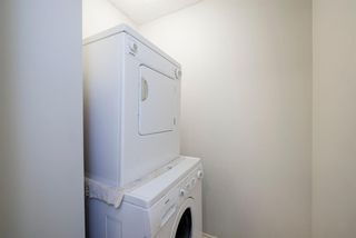 Photo 15: 11A 80 Galbraith Drive SW in Calgary: Glamorgan Apartment for sale : MLS®# A1097339