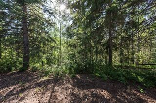 Photo 29: 7 100 Heron Point Close: Rural Wetaskiwin County Townhouse for sale : MLS®# E4251102