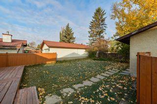 Photo 39: 10220 166 Avenue in Edmonton: Zone 27 House for sale : MLS®# E4265876