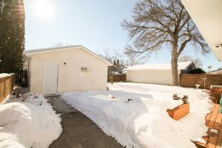Photo 16: 147 Houde Drive in Winnipeg: St Norbert Residential for sale (1Q)  : MLS®# 202003929