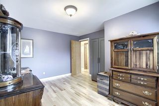 Photo 20: 5915 18 Avenue NE in Calgary: Pineridge Detached for sale : MLS®# A1032998