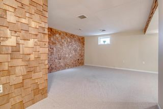 Photo 41: 139 Cantrell Place SW in Calgary: Canyon Meadows Detached for sale : MLS®# A1096230