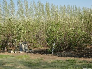 Photo 6: Lot-B Marina Orchard in Blucher: Lot/Land for sale (Blucher Rm No. 343)  : MLS®# SK819447
