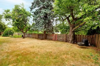Photo 11: 2881 NORMAN Avenue in Coquitlam: Ranch Park House for sale : MLS®# R2603533
