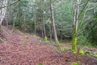 Photo 11: 2604 Yardarm Rd in : GI Pender Island Land for sale (Gulf Islands)  : MLS®# 863927