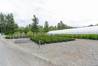 Photo 12: 3125 Piercy Ave in : CV Courtenay City Land for sale (Comox Valley)  : MLS®# 866873