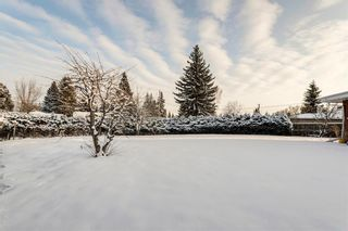 Photo 31: 1220 MAPLEGLADE Place SE in Calgary: Maple Ridge Detached for sale : MLS®# C4277925