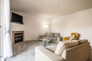 Photo 6: 201 3912 Stanley Road SW in Calgary: Parkhill Apartment for sale : MLS®# A1092035