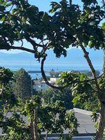 Main Photo: 306 924 Esquimalt Rd in : Es Old Esquimalt Condo for sale (Esquimalt)  : MLS®# 878822