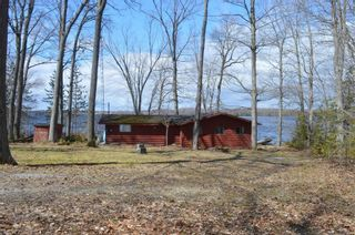 Photo 15: 195 Campbell Beach Road in Kawartha Lakes: Rural Carden House (Bungalow) for sale : MLS®# X4741548