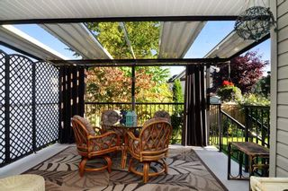 Photo 12: 23742 116 Avenue in Maple Ridge: Cottonwood MR House for sale : MLS®# R2108075