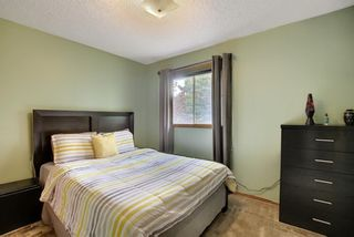 Photo 24: 172 Edendale Way NW in Calgary: Edgemont Detached for sale : MLS®# A1133694