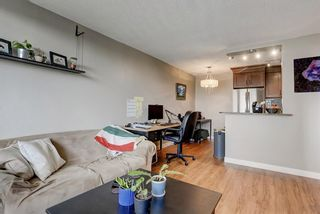 Photo 12: 403 507 57 Avenue SW in Calgary: Windsor Park Apartment for sale : MLS®# A1146991