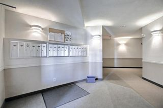 Photo 30: 205 7205 Valleyview Park SE in Calgary: Dover Apartment for sale : MLS®# A1152735
