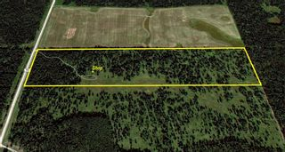 Photo 8: 31339 Rge Rd 55: Rural Mountain View County Land for sale : MLS®# A1136736
