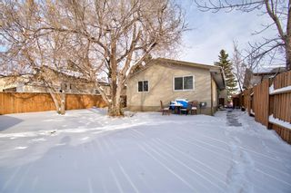 Photo 25: 180 Maitland Place NE in Calgary: Marlborough Park Detached for sale : MLS®# A1048392
