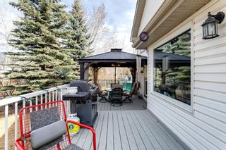 Photo 41: 67 Douglas Glen Place SE in Calgary: Douglasdale/Glen Detached for sale : MLS®# A1088230