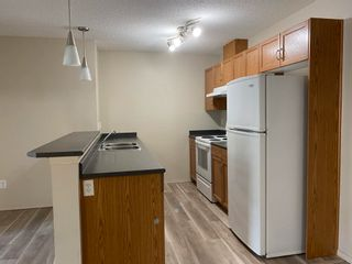 Photo 5: 112 1188 HYNDMAN Road in Edmonton: Zone 35 Condo for sale : MLS®# E4258904
