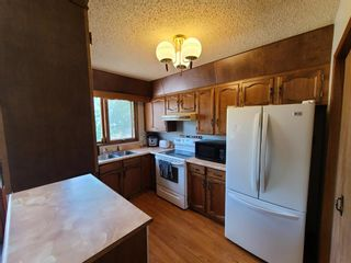 Photo 9: 21 THOMAS Drive: Strathmore Detached for sale : MLS®# A1116850