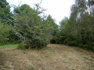 Photo 5: Salem Road in Greenhill: 108-Rural Pictou County Vacant Land for sale (Northern Region)  : MLS®# 202121181
