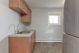 Photo 26: 14603 97 Avenue in Edmonton: Zone 10 House for sale : MLS®# E4260476