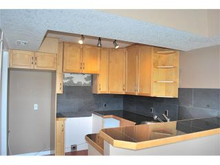 Photo 14: 411 1540 17 Avenue SW in Calgary: Sunalta Condo for sale : MLS®# C4060682