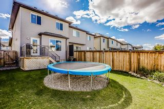 Photo 21: 2345 Baywater Crescent SW: Airdrie Semi Detached for sale : MLS®# A1147573