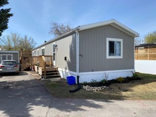 Main Photo: 41 3223 83 Street NW in Calgary: Greenwood/Greenbriar Mobile for sale : MLS®# A1108335