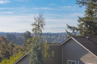 Photo 44: 1225 Tall Tree Pl in : SW Strawberry Vale House for sale (Saanich West)  : MLS®# 885986