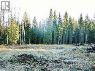 Photo 8: 53018 RANGE RD 175 in Rural Yellowhead County: Vacant Land for sale : MLS®# AW38443