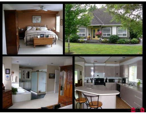 Main Photo: 18752 56A Avenue in Surrey: Cloverdale BC House for sale (Cloverdale)  : MLS®# F2914369