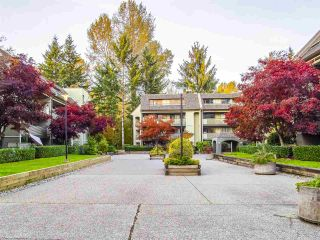 """Photo 2: 310 1210 PACIFIC Street in Coquitlam: North Coquitlam Condo for sale in """"Glenview Manor"""" : MLS®# R2521391"""