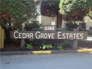 Photo 1: 21 11160 Kingsgrove Avenue in Cedar Grove Estates: Home for sale : MLS®#  V1026818