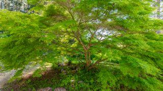 Photo 13: 286 Brady's Beach Trail: Bamfield House for sale (Port Alberni)