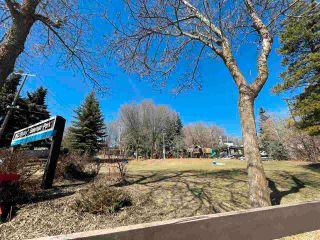 Photo 38: 9728 89 Avenue in Edmonton: Zone 15 House for sale : MLS®# E4239842