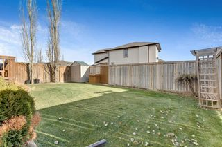 Photo 32: 389 Evanston View NW in Calgary: Evanston Detached for sale : MLS®# A1043171